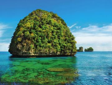Фотообои море пальмы