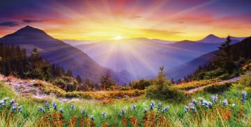Солнце фото рассвет