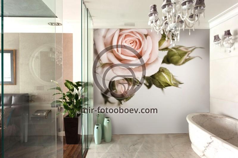 wall murals for bathroom