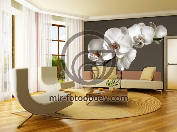 Фотообои в интерьере гостиной фото орхидея